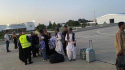 Premier: Akcja ewakuacji obywateli Afganistanu weszła w kolejny etap - miniaturka