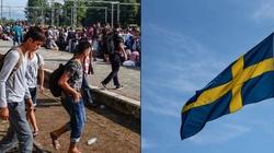 ,,Nie wrócimy do 2015 roku!''. Szwecja imigrantów nie przyjmie - miniaturka