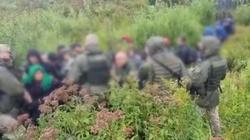 Żołnierze Łukaszenki przekroczyli granicę Litwy, aby przerzucić imigrantów - miniaturka