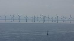 Naukowcy: Elektrownie wiatrowe to droga do katastrofy! - miniaturka