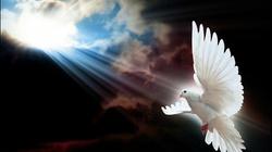 Od czego zależy skuteczność modlitwy wstawienniczej o uzdrowienie? - miniaturka
