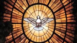 O tych grzechach Jezus powiedział, że nie będą odpuszczone  - miniaturka