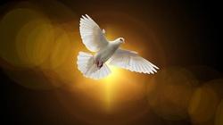,,Nigdy nie ustawajmy w wołaniu i błaganiu Ducha!'' - miniaturka