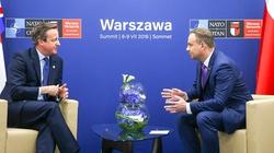 Prezydent Andrzej Duda spotkał się z Davidem Cameronem - miniaturka