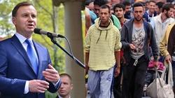 Andrzej Duda: Pomagać tym, którzy tego potrzebują w ich krajach - miniaturka
