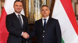 Andrzej Duda: Trwa kryzys wartości na którym zbudowano cywilizację europejską - miniaturka