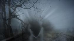 Jak odróżnić demona udającego zmarłego od duszy czyśćcowej? - miniaturka