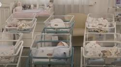 Zatrzymać handel dziećmi. Petycja do ONZ w sprawie zakazu surogacji - miniaturka