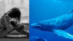 Meksykański biskup potępił 'Niebieskiego wieloryba' - miniaturka