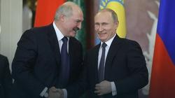 Braun chce sojuszu Polski z Koniem Trojańskim Putina - miniaturka
