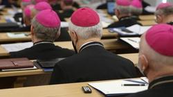 Polscy biskupi rozpoczynają wizytę ad limina - miniaturka