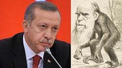 Turcja: Darwin do śmieci. Teoria ewolucji wycofana ze szkół - miniaturka