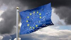 Polityczne samobójstwo Europy - miniaturka