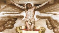 Msza św. okiem mistyczki. Co się dokonuje na ołtarzu?  - miniaturka
