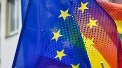 ,,Debata w UE opierała się na fundamentalnym kłamstwie!'' - miniaturka