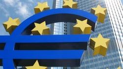 Rząd zlikwidował urząd pełnomocnika ds. wprowadzenia euro - miniaturka