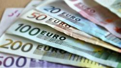 Kaiser: Czechy nigdy nie przyjmą Euro - miniaturka