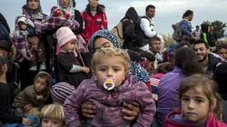 APEL: Nie czekajmy, aż uchodźcy przybędą do nas – pomóżmy im na miejscu! - miniaturka