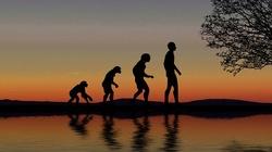 Czy Pan Bóg mógł posłużyć się ewolucją? - miniaturka
