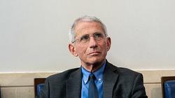 Główny epidemiolog USA: Najgorsze dopiero nadejdzie - miniaturka