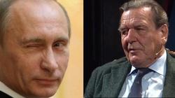 ,,Schroeder to człowiek Putina''. Prof. Musiał komentuje wypowiedź byłego kanclerza - miniaturka