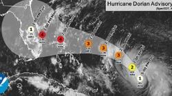 Do Florydy zbliża się potężny huragan! Ogłoszono stan zagrożenia - miniaturka