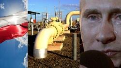 Coraz mniej ,,karmimy'' Rosję zakupami gazu i ropy - miniaturka