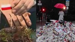 Prezydencie Duda - odebrać obywatelstwo za beszczeszczenie polskiej flagi! - miniaturka