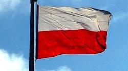 Wzrost gospodarczy w Polsce w tym roku przyspieszy! - miniaturka