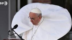 Niedługo Papież do nas przyleci... już jak widać... - miniaturka