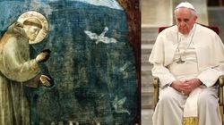 Rowiński: Nie taki Franciszek ekologiczny, jak go malują - miniaturka