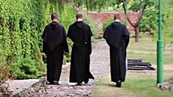 ZOBACZ jak wygląda dzień za murami klasztoru Franciszkanów! [FILM] - miniaturka