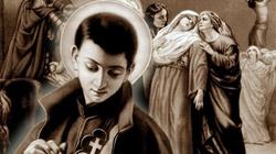Święty Gabriel od Matki Bożej Bolesnej - wzór dla dzisiejszej młodzieży - miniaturka