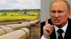 Skandynawski gaz pomoże Polsce w walce z rosyjskim monopolem! - miniaturka