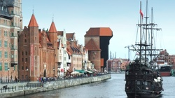 Cela plus: CBA w Gdańsku. Kilkadziesiąt milionów strat - miniaturka