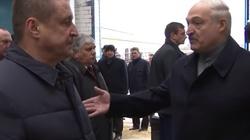 'Kajdanki i do aresztu!' Łukaszenka beszta właścicieli farmy - miniaturka