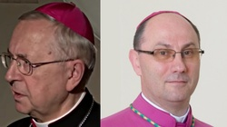Episkopat Polski postanowił być żabą u kowala - miniaturka