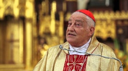 Kard. Zenon Grocholewski: Kilka słów prawdy o homoseksualnych księżach - miniaturka