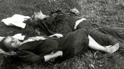 77 lat temu miała miejsce kulminacja fali mordowania Polaków przez UPA - miniaturka