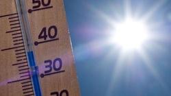Jest ci w pracy za gorąco? Po prostu nie pracuj - miniaturka