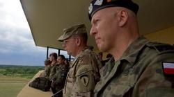 Stany Zjednoczone wzmacniają Polskę. Trafi do nas wiele ciężkiego sprzętu - miniaturka