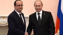 Francuz Hollande bezczelnie poucza Polskę ws. Trumpa - miniaturka