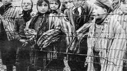"""Państwo w remoncie: Koniec ze szkalowaniem Polski! Kara więzienia za """"polskie obozy""""? - miniaturka"""