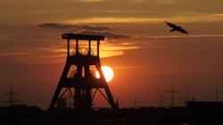 UK. Powstanie pierwsza od 30 lat kopalnia węgla kamiennego - miniaturka