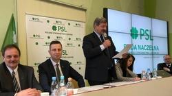 PSL dołączyło do Koalicji Europejskiej - miniaturka