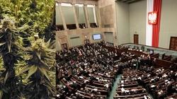 Matka Kurka dla Fronda: Lecznicza marihuana, czyli cud zjednoczonej Polski - miniaturka