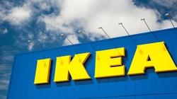 IKEA ma miliard zaległości, bo nie płaciła podatków - miniaturka