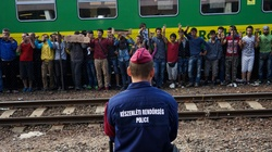 Węgry chcą antyimigranckiej koalicji państw w UE - miniaturka