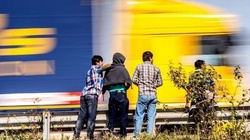 Imigranci zaatakowali strażaków, którzy chcieli pomóc.... - miniaturka