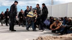 Imigranci udają nieletnich, by uniknąć deportacji! - miniaturka